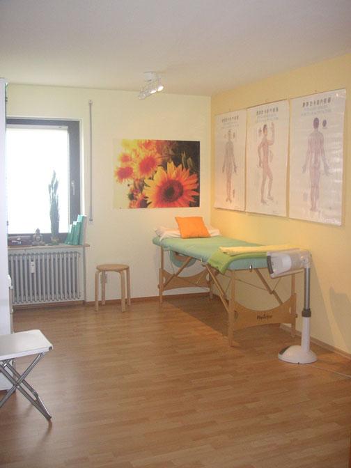 Akupunktur Praxis Wangen Allgäu